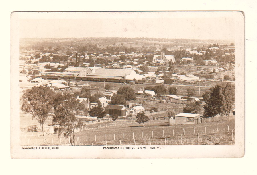 Panorama of Young in the 1920s Source: posted on Historic NSW Railway Stations and Infrastructure Facebook page